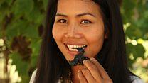 Makan serangga demi selamatkan dunia dari ancaman kelaparan