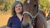 'I survived disaster - then found my horse'