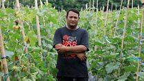 Mantan preman yang sukses menjadi petani panutan