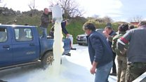 Spilt milk over Italian farmers' outcry