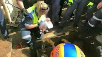 O tenso momento em que bebê recém-nascida é resgatada de um bueiro na África do Sul