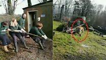 Lion tug-of-wars slammed by animal groups