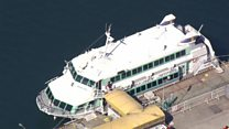Japanese ferry 'hits whale'