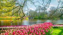 Де і коли найкраще зустрічати весну?