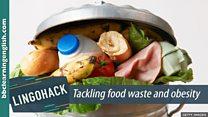 Lingohack - урок англійської про марнування продуктів