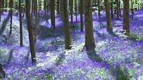 Места која треба посетити у пролеће