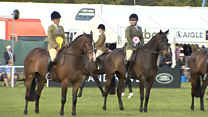 The King's Troop are preparing for this year's Royal Windsor Horse Show