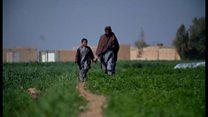 タリバンと平和は築けるのか? BBC記者がアフガニスタンで取材