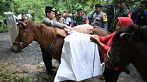 Horses take ballot boxes to Indonesian villages