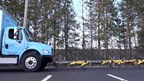 Роботы Boston Dynamics наконец-то делают что-то полезное