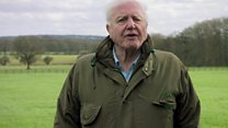 Attenborough presents Climate Change: The Facts