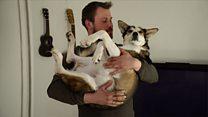 """""""Они наслаждаются жизнью больше нас"""": как на Шпицбергене живет владелец 110 собак"""