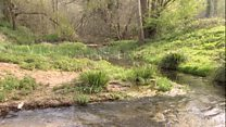 Dried-up river revived