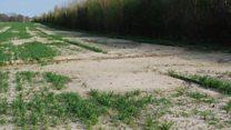 راهیتازه برای کاهش شتاب فرسایش خاک