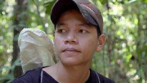 'I've killed hundreds of endangered birds'