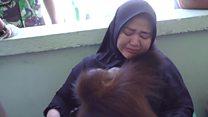 هل تكفي الإجراءات الاندونيسية في انقاذ الغابة في اندونيسيا؟