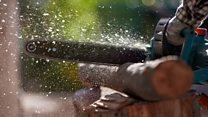 Million dollar idea: The chainsaw