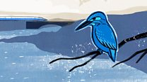 How a kingfisher helped reshape Japan's bullet train