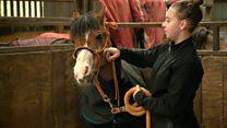 'Horse riding turned my life around'
