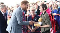 A teddy bear for Prince Harry