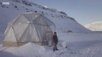 Kisah petani yang sukses bercocok tanam di suhu -30C