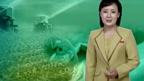 North Korea drought: State TV shows lush crops and water