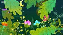 なぜ今、生物多様性が問題なのか
