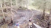 Drone video shows forest fire aftermath
