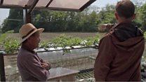 原発の町で野菜作り、震災から8年 福島