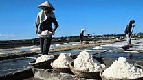 Việt Nam sản xuất muối dư thừa những vẫn phải nhập khẩu