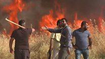 ما سر ظاهرة الحرائق التي تلتهم محاصيل القمح في سوريا؟