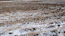 قانون حفاظت از خاک اجرایی میشود: آلوده کردن و صادرات خاک ممنوع