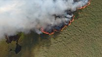 """""""Ситуация будет с каждым годом хуже"""": главное о лесных пожарах в России"""