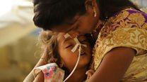 ਦਿਮਾਗੀ ਬੁਖ਼ਾਰ: ਕੀ ਲੀਚੀ ਹੈ ਜਾਨਲੇਵਾ ਬਿਮਾਰੀ ਦਾ ਕਾਰਨ?