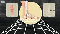ทำไมเท้าคนเราจึงยาวขึ้นมา 2 ขนาดในช่วง 40 ปี