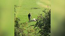 Man filmed attacking horse in playing field