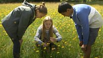 The young people looking after nature