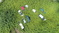 Former allotment turned into car graveyard