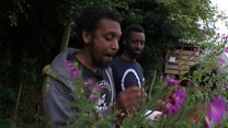 London's hip-hop garden