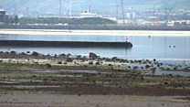 Sunken submarine netted during boy's work experience