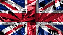 Cannabis: Should it be legal in the UK?