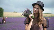 رونق مزرعههای لوندر یا اسطوقدوس، به لطف شبکههای اجتماعی