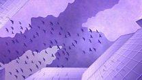 Örümcek ağlarından kuşların hayatını kurtaran bir fikir doğdu