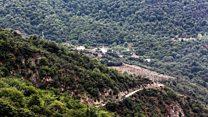 هشدار درباره سرنوشت جنگلهای شمال ایران