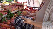 Zero waste: Како живети без отпада у Србији