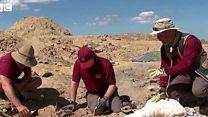 ਡਾਇਨਾਸੌਰਾਂ ਦਾ 15 ਕਰੋੜ ਸਾਲ ਪੁਰਾਣਾ ਕਬਰਿਸਤਾਨ