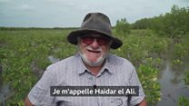 L'homme qui aide à sauver les mangroves du Sénégal