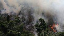 غابات الأمازون تحترق – فمن المسؤول؟