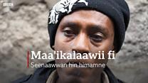 'Maa'ikalaawii'  - eela yoomuu hin fayyine