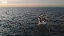 زن نجات یافته از سرطان، فاصله بریتانیا و فرانسه را چهار بار پیاپی شنا کرد